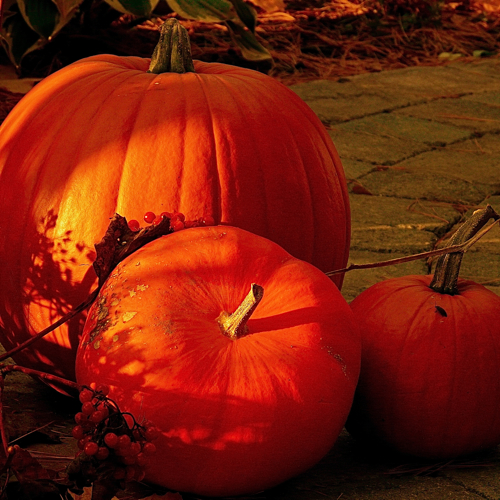 10 destinos para un Halloween de muerte